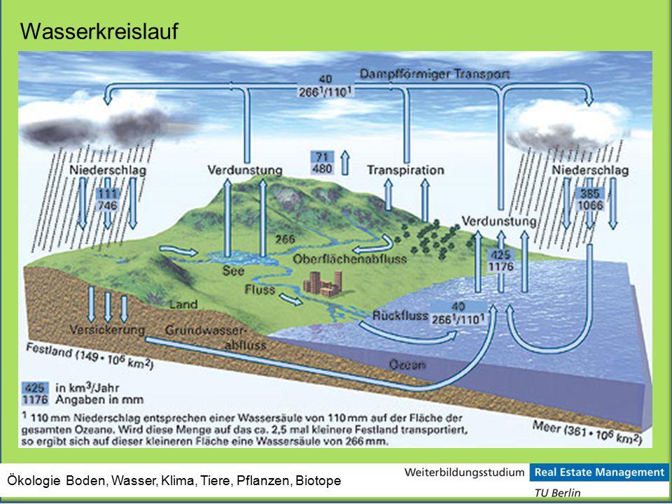 Ökologie Boden, Wasser, Klima, Tiere, Pflanzen, Biotope Wasserkreislauf
