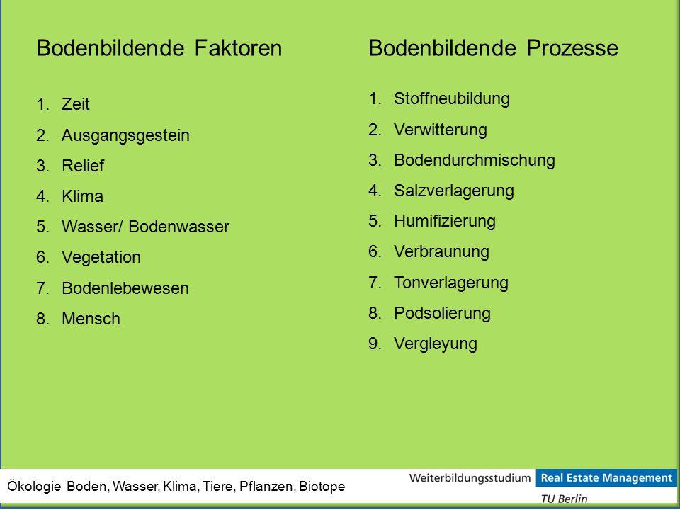 Ökologie Boden, Wasser, Klima, Tiere, Pflanzen, Biotope Bodenbildende Faktoren 1.Zeit 2.Ausgangsgestein 3.Relief 4.Klima 5.Wasser/ Bodenwasser 6.Veget