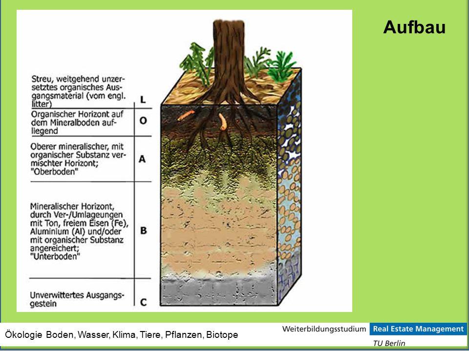 Ökologie Boden, Wasser, Klima, Tiere, Pflanzen, Biotope Aufbau