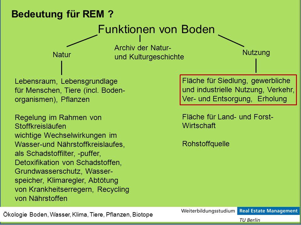 Funktionen von Boden Natur Lebensraum, Lebensgrundlage für Menschen, Tiere (incl. Boden- organismen), Pflanzen Regelung im Rahmen von Stoffkreisläufen