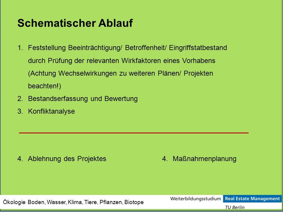 Ökologie Boden, Wasser, Klima, Tiere, Pflanzen, Biotope Schematischer Ablauf 1.Feststellung Beeinträchtigung/ Betroffenheit/ Eingriffstatbestand durch