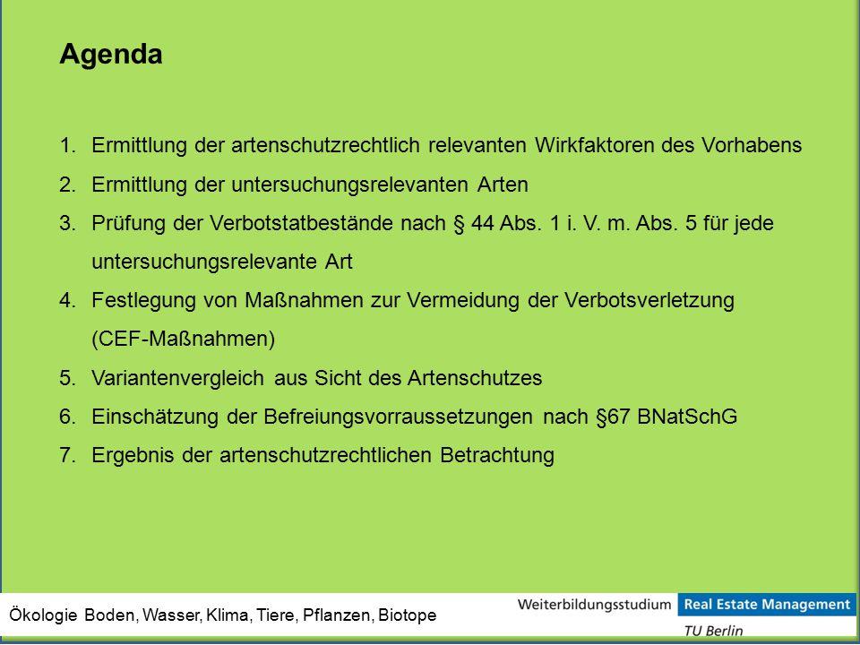 Agenda 1.Ermittlung der artenschutzrechtlich relevanten Wirkfaktoren des Vorhabens 2.Ermittlung der untersuchungsrelevanten Arten 3.Prüfung der Verbot
