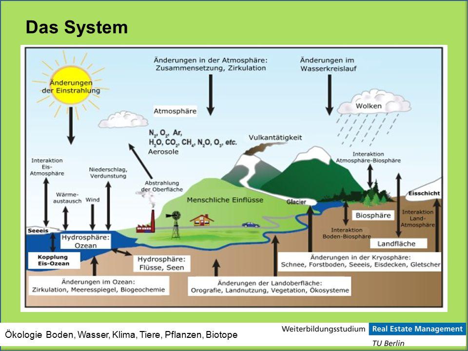Ökologie Boden, Wasser, Klima, Tiere, Pflanzen, Biotope Das System