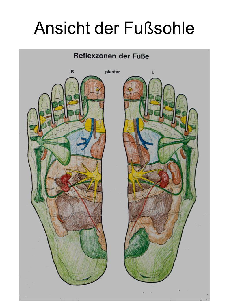 Ansicht der Fußsohle
