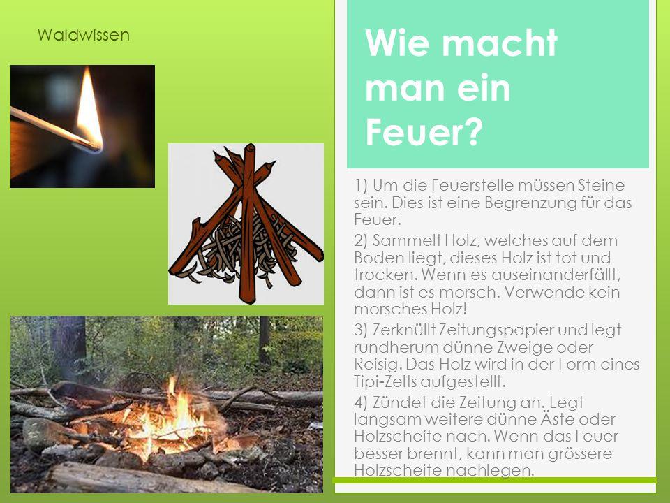 Waldwissen Wie macht man ein Feuer? 1) Um die Feuerstelle müssen Steine sein. Dies ist eine Begrenzung für das Feuer. 2) Sammelt Holz, welches auf dem