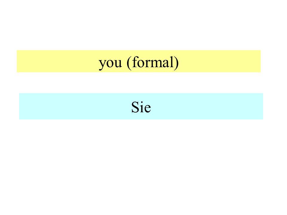 you (formal) Sie