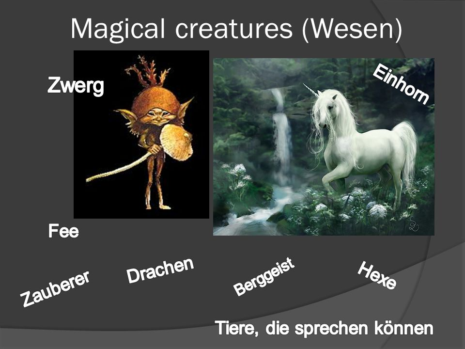 Magical creatures (Wesen)