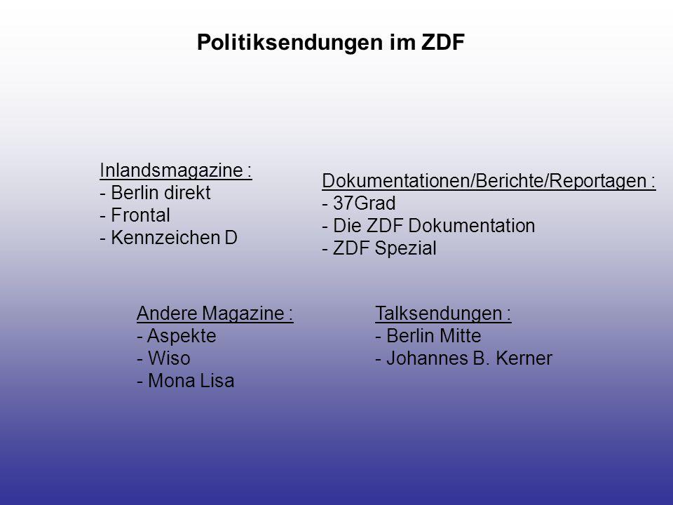 ProSieben : - Focus TV - BIZZ RTL : politische(s) Inlandsmagazin(e) : - Spiegel TV andere Magazine: - Explosiv – Das Magazin - Extra - Guten Abend RTL - Stern TV SAT.1: -Akte2000 -Newsmaker Andere Politikquellen privater Sender