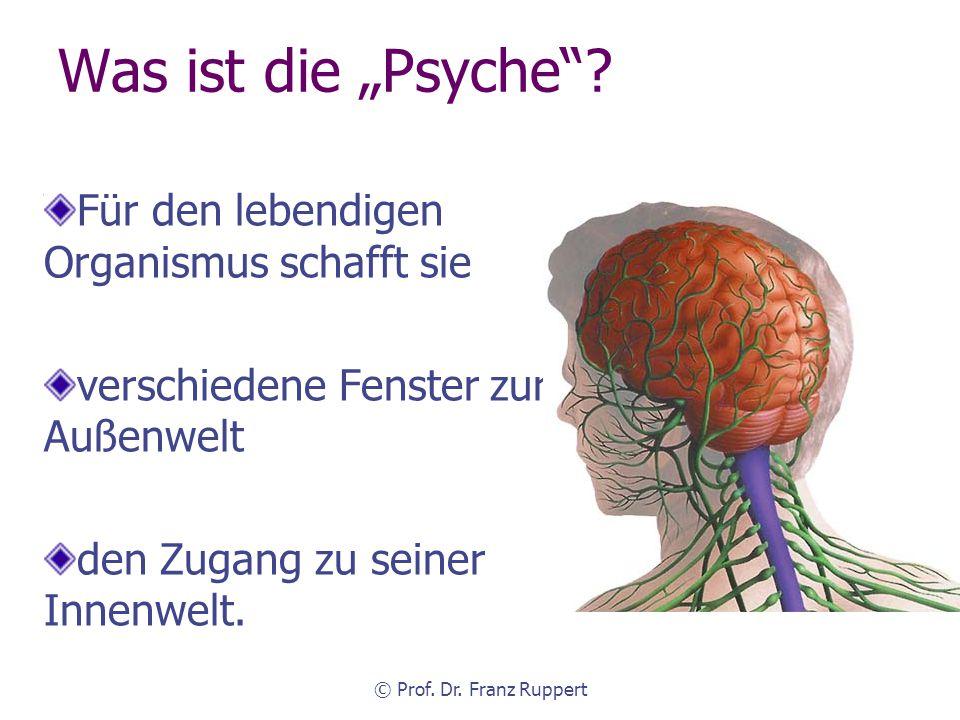 © Prof.Dr. Franz Ruppert KSFH München Vier Arten von Traumata (Ruppert 2005) Existenztrauma (z.B.