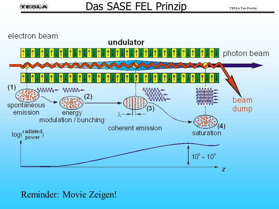TESLA Test Facility Das SASE FEL Prinzip Reminder: Movie Zeigen!