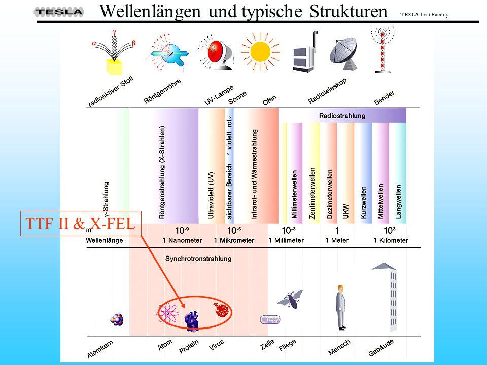 TESLA Test Facility Wellenlängen und typische Strukturen TTF II & X-FEL
