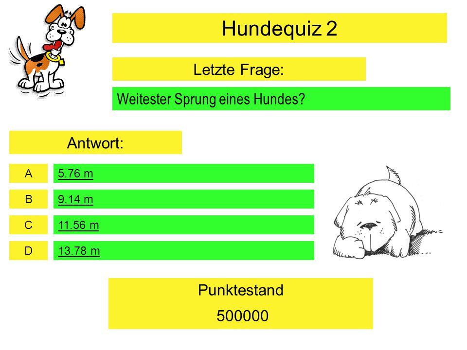 A B C D Punktestand Weitester Sprung eines Hundes? 5.76 m 11.56 m 13.78 m 500000 9.14 m Hundequiz 2 Letzte Frage: Antwort: