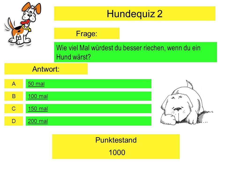 """A B C D Punktestand Was bedeutet es, wenn ein Hund seine Ohren auf """"Durchzug stellt."""