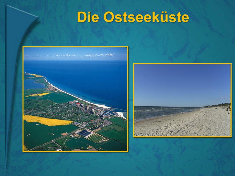 Die Ostseeküste