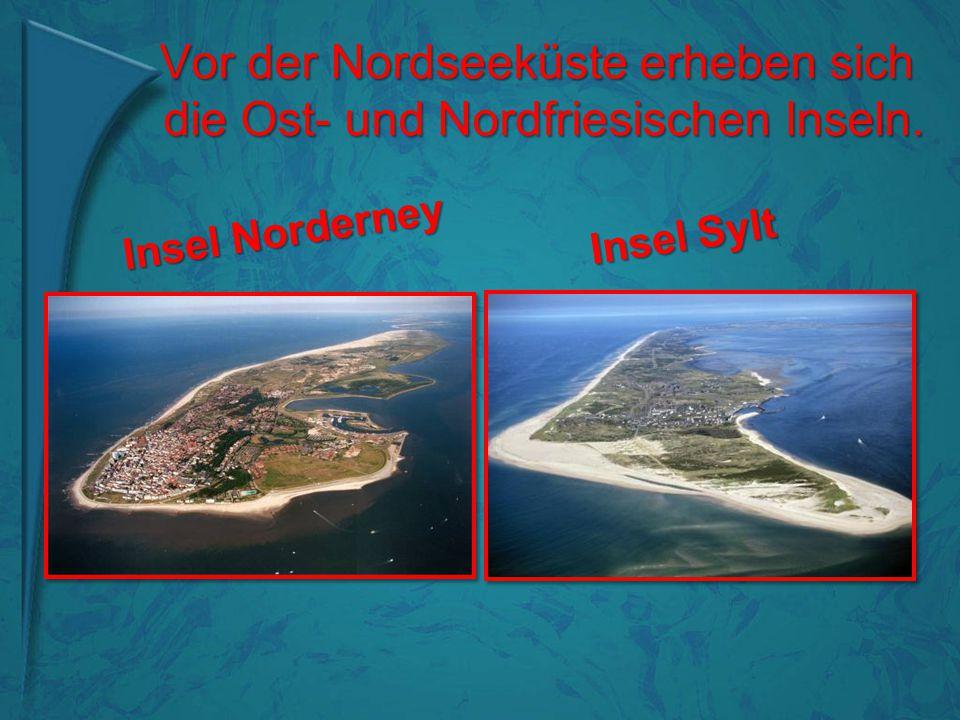 Vor der Nordseeküste erheben sich die Ost- und Nordfriesischen Inseln. Vor der Nordseeküste erheben sich die Ost- und Nordfriesischen Inseln. Insel No