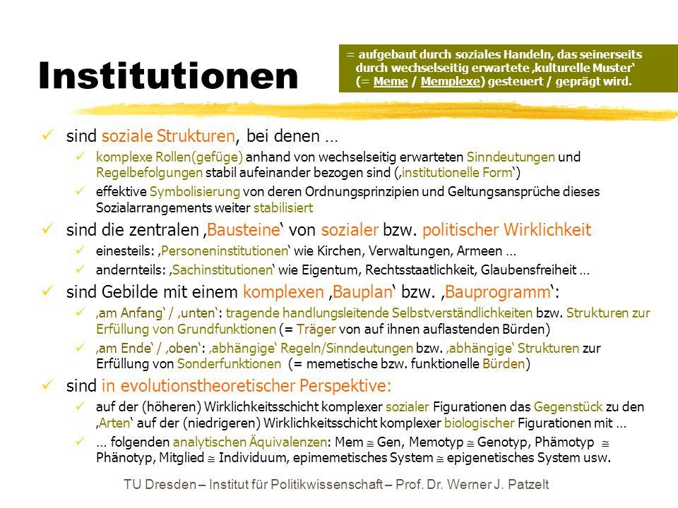 Institutionen sind soziale Strukturen, bei denen … komplexe Rollen(gefüge) anhand von wechselseitig erwarteten Sinndeutungen und Regelbefolgungen stab