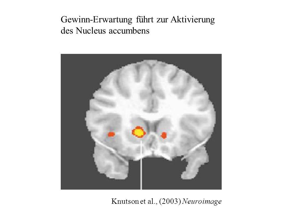 Knutson et al., (2003) Neuroimage Gewinn-Erwartung führt zur Aktivierung des Nucleus accumbens