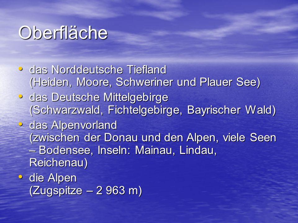 Oberfläche das Norddeutsche Tiefland (Heiden, Moore, Schweriner und Plauer See) das Norddeutsche Tiefland (Heiden, Moore, Schweriner und Plauer See) d
