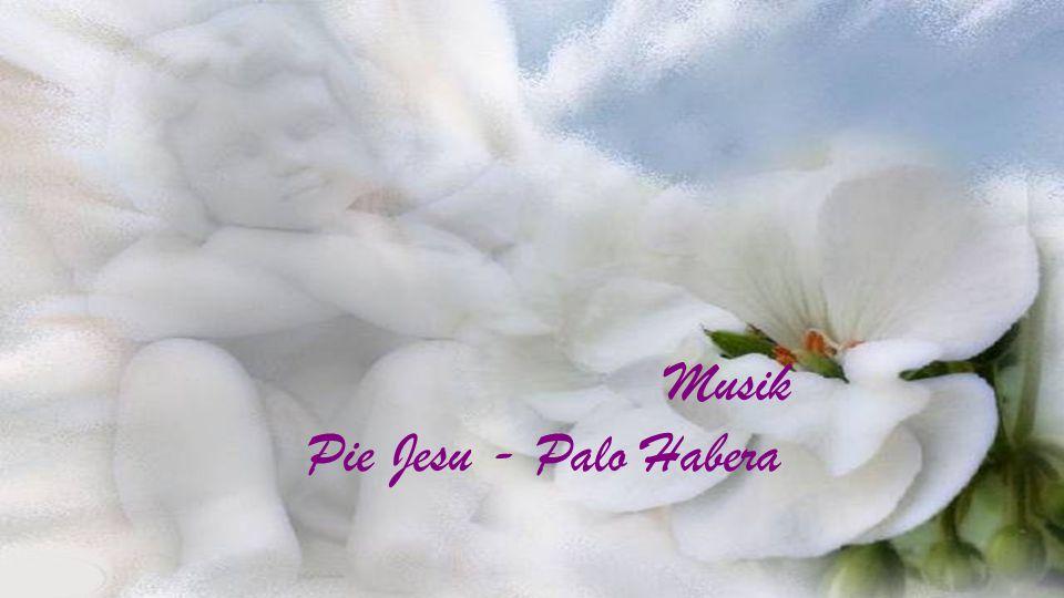 Worte von Mutter Teresa gebürtig Anjezë (Agnes) Gonxha Bojaxhiu