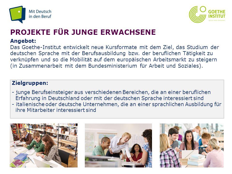 Seite 13 PROJEKTE FÜR JUNGE ERWACHSENE Angebot: Das Goethe-Institut entwickelt neue Kursformate mit dem Ziel, das Studium der deutschen Sprache mit de