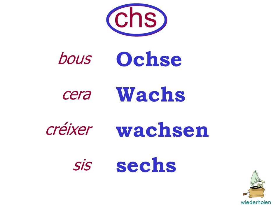 Buch Sache machen Ach. ch wiederholen Bücher euch sicher durch wiederholen llibre cosa fer Ca.