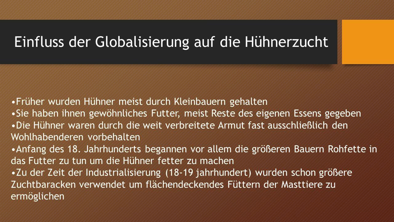 Einfluss der Globalisierung auf die Hühnerzucht(2) Durch das Bevölkerungswachstum und den Konkurrenzdruck wurden nahezu alle Bauern gezwungen das Futter mit Ergänzungsmitteln zu versehen Heute werden ca.