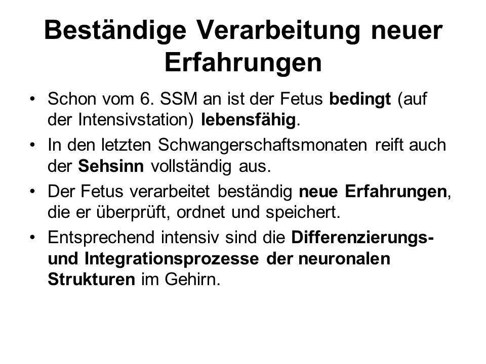 Beständige Verarbeitung neuer Erfahrungen Schon vom 6.