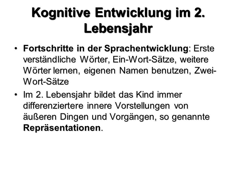 Kognitive Entwicklung im 2.