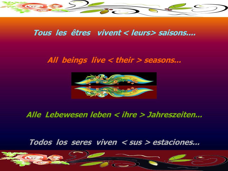 Tous les êtres vivent saisons....All beings live seasons...