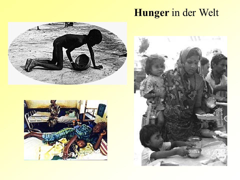 Hunger in der Welt