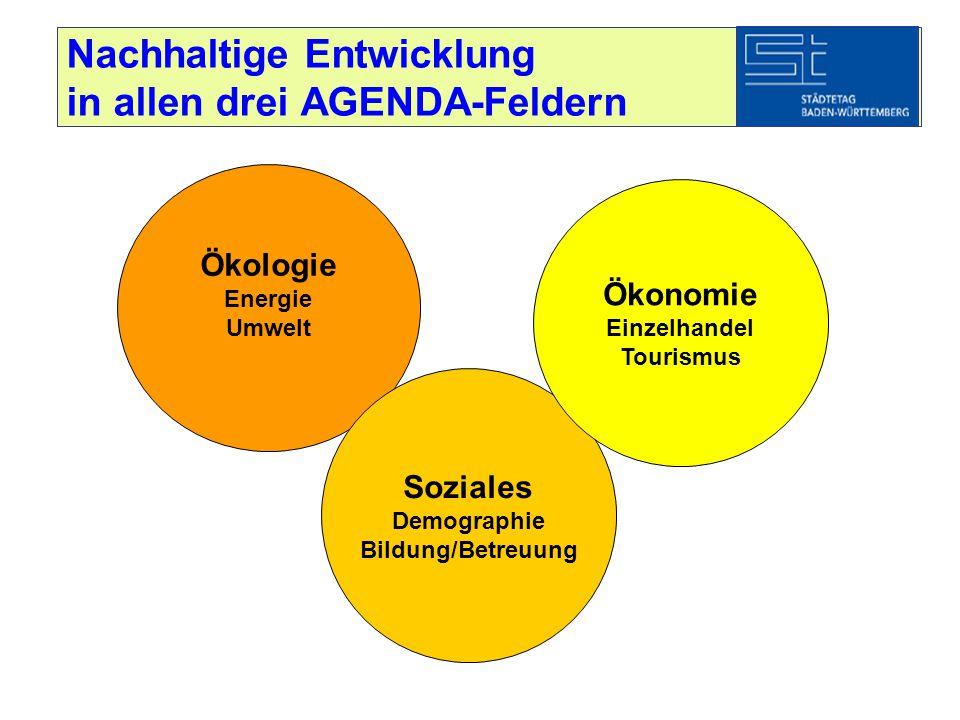 Nachhaltige Entwicklung in allen drei AGENDA-Feldern Ökologie Energie Umwelt Soziales Demographie Bildung/Betreuung Ökonomie Einzelhandel Tourismus