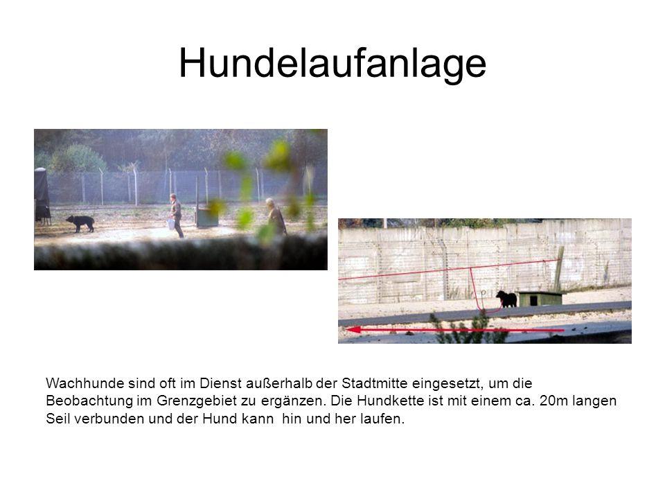 Hundelaufanlage Wachhunde sind oft im Dienst außerhalb der Stadtmitte eingesetzt, um die Beobachtung im Grenzgebiet zu ergänzen. Die Hundkette ist mit