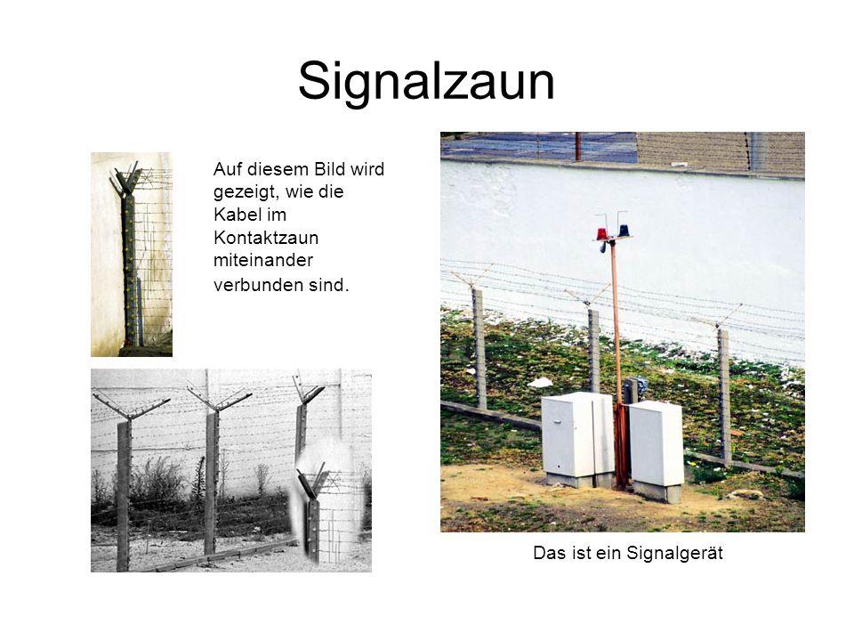 Signalzaun Auf diesem Bild wird gezeigt, wie die Kabel im Kontaktzaun miteinander verbunden sind. Das ist ein Signalgerät