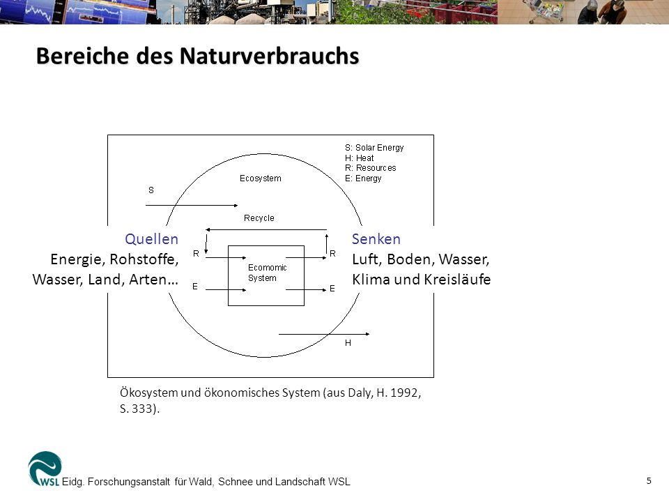 Bereiche des Naturverbrauchs Eidg. Forschungsanstalt für Wald, Schnee und Landschaft WSL 5 Ökosystem und ökonomisches System (aus Daly, H. 1992, S. 33