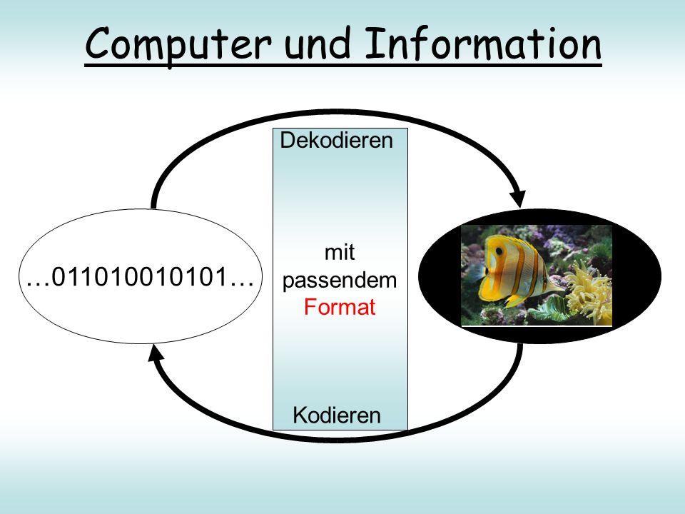 mit passender Vorschrift Computer und Information …011010010101… mit passendem Format Dekodieren Kodieren Hallo Susi, Mit diesem Brief möchte ich dich ganz herzlich