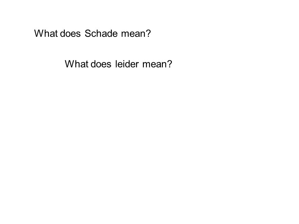 What does Schade mean What does leider mean