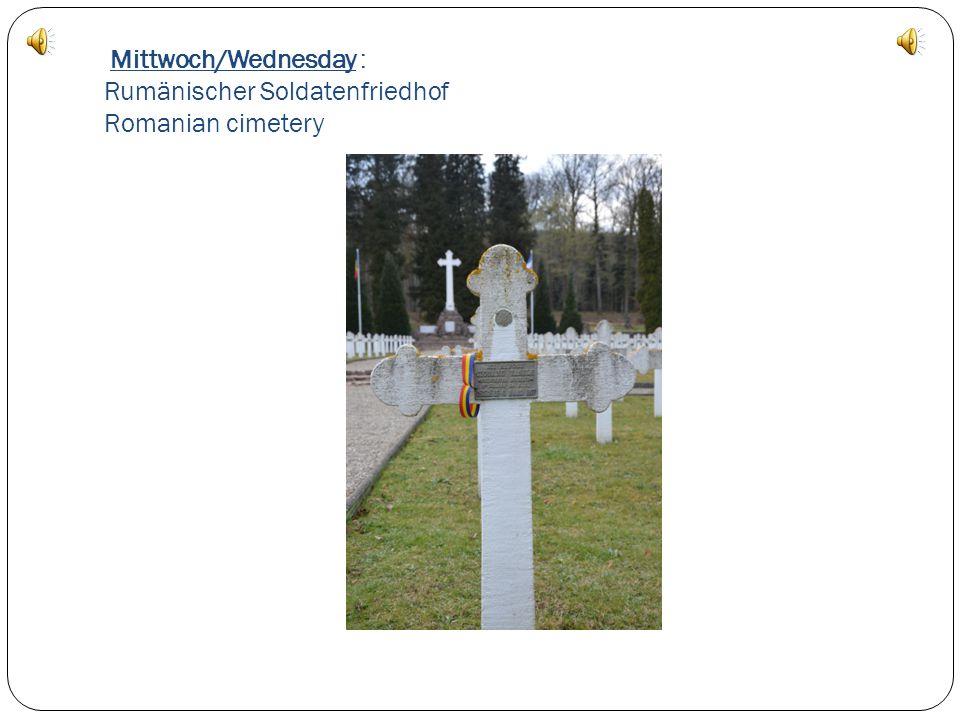 Mittwoch/Wednesday : Ein Storchennest A Storknest