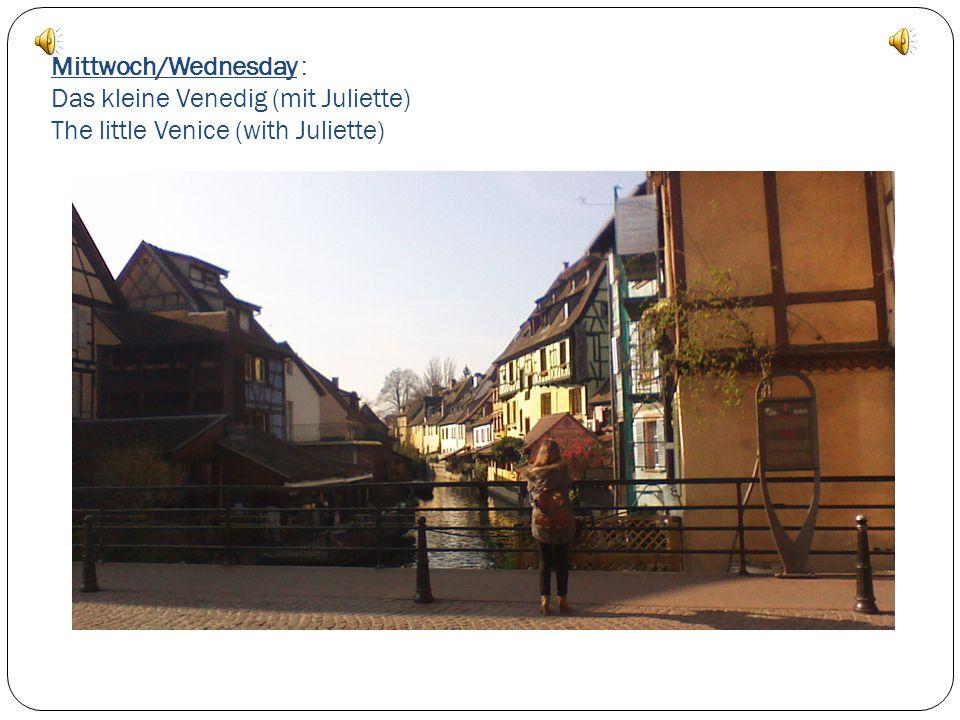 Mittwoch/Wednesday : Die Führung von Colmar mit der gesamten Gruppe. Visit of Colmar with everybody