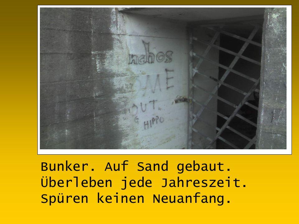 Bunker. Auf Sand gebaut. Überleben jede Jahreszeit. Spüren keinen Neuanfang.