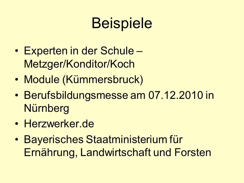 Beispiele Experten in der Schule – Metzger/Konditor/Koch Module (Kümmersbruck) Berufsbildungsmesse am 07.12.2010 in Nürnberg Herzwerker.de Bayerisches Staatministerium für Ernährung, Landwirtschaft und Forsten