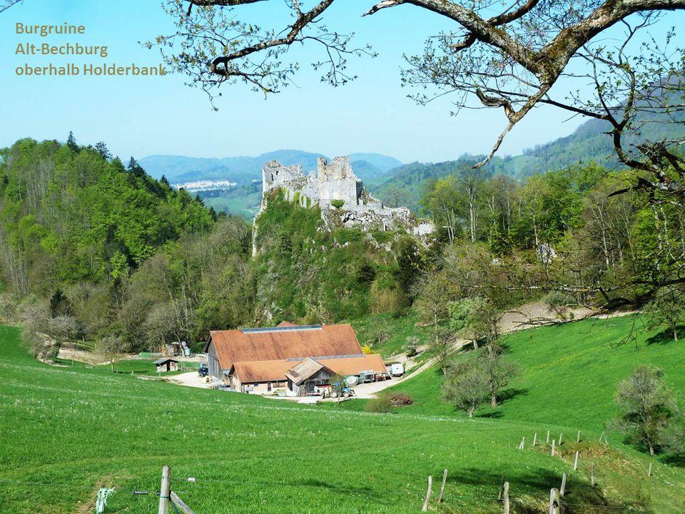Burgruine Alt-Bechburg oberhalb Holderbank