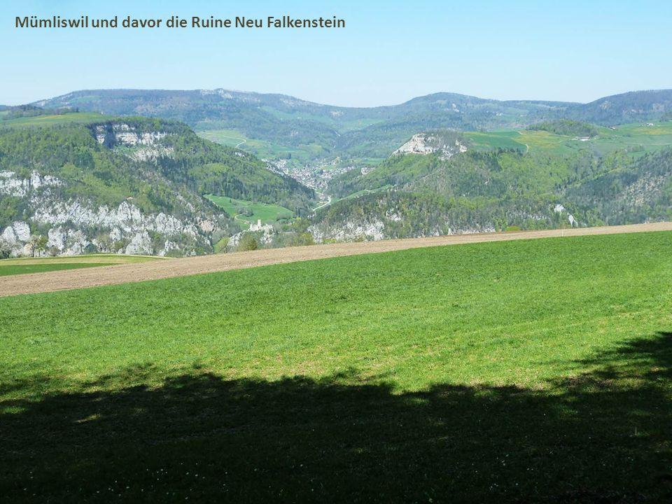 Mümliswil und davor die Ruine Neu Falkenstein