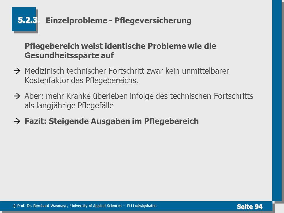 © Prof. Dr. Bernhard Wasmayr, University of Applied Sciences - FH Ludwigshafen Seite 94 Einzelprobleme - Pflegeversicherung Pflegebereich weist identi