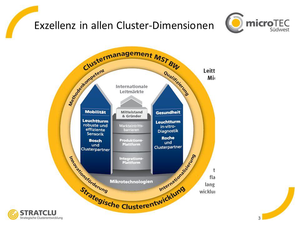 3 Exzellenz in allen Cluster-Dimensionen