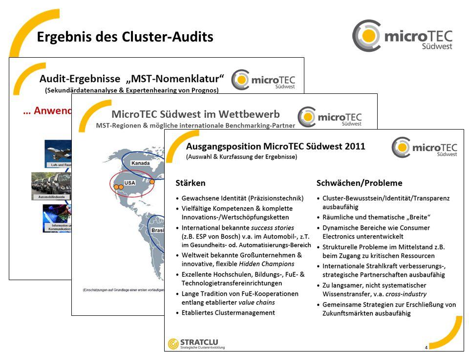 5 Ergebnis des Cluster-Audits