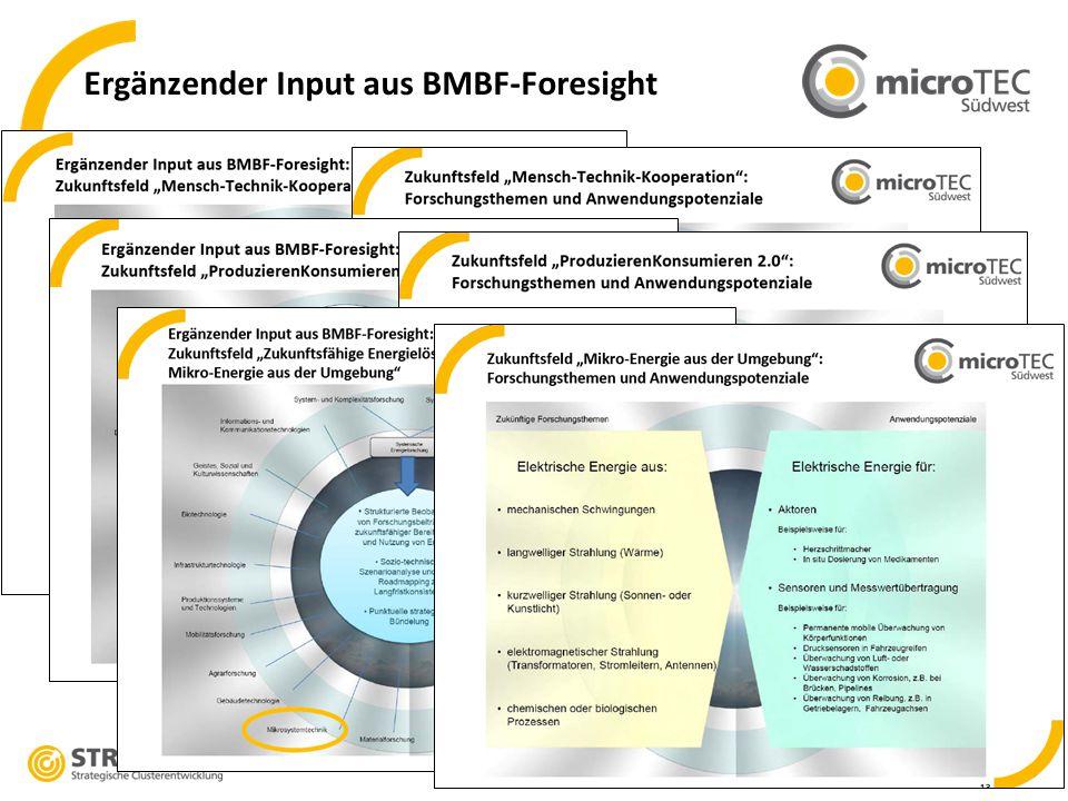 8 Ergänzender Input aus BMBF-Foresight