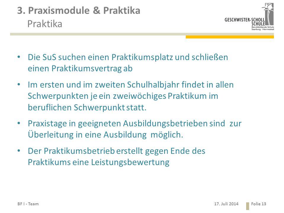 17. Juli 2014 3. Praxismodule & Praktika Praktika Die SuS suchen einen Praktikumsplatz und schließen einen Praktikumsvertrag ab Im ersten und im zweit