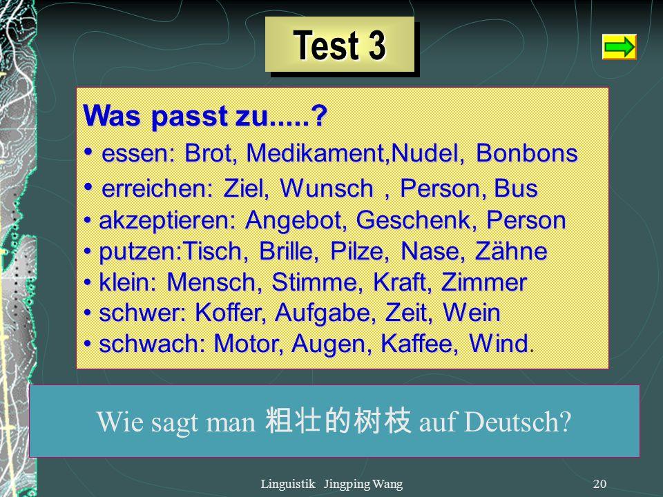 Linguistik Jingping Wang19 3.2.3. Syntagmatische Relation 3.2.3. Syntagmatische Relation Was kann man braten? Fleisch, Schnitzel, Spinat, Sonnenblumme