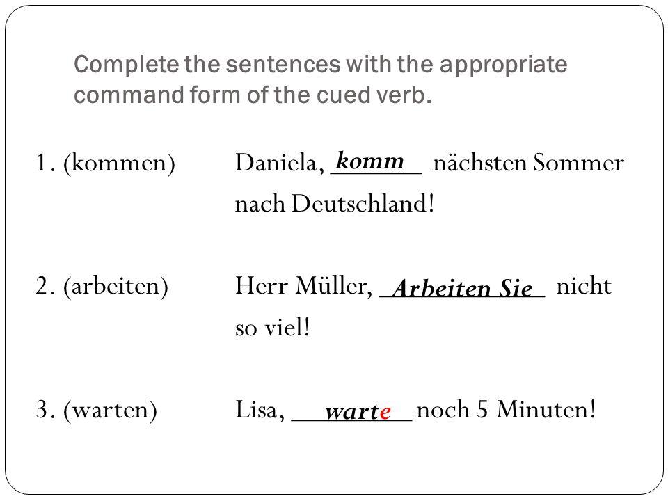 Complete the sentences with the appropriate command form of the cued verb. 1. (kommen)Daniela, ______ nächsten Sommer nach Deutschland! 2. (arbeiten)H