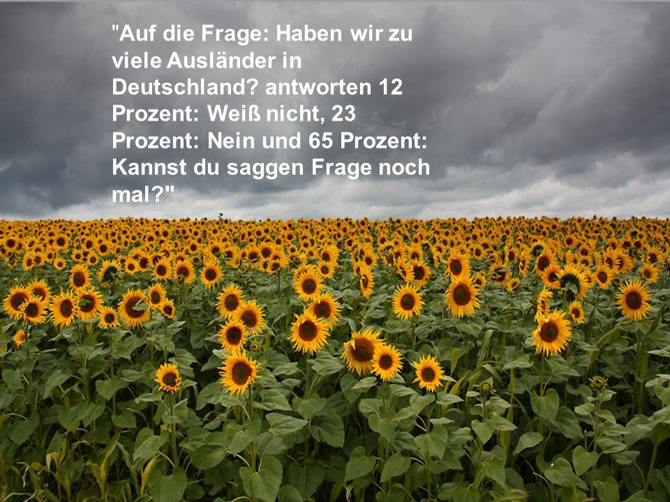 Auf die Frage: Haben wir zu viele Ausländer in Deutschland.
